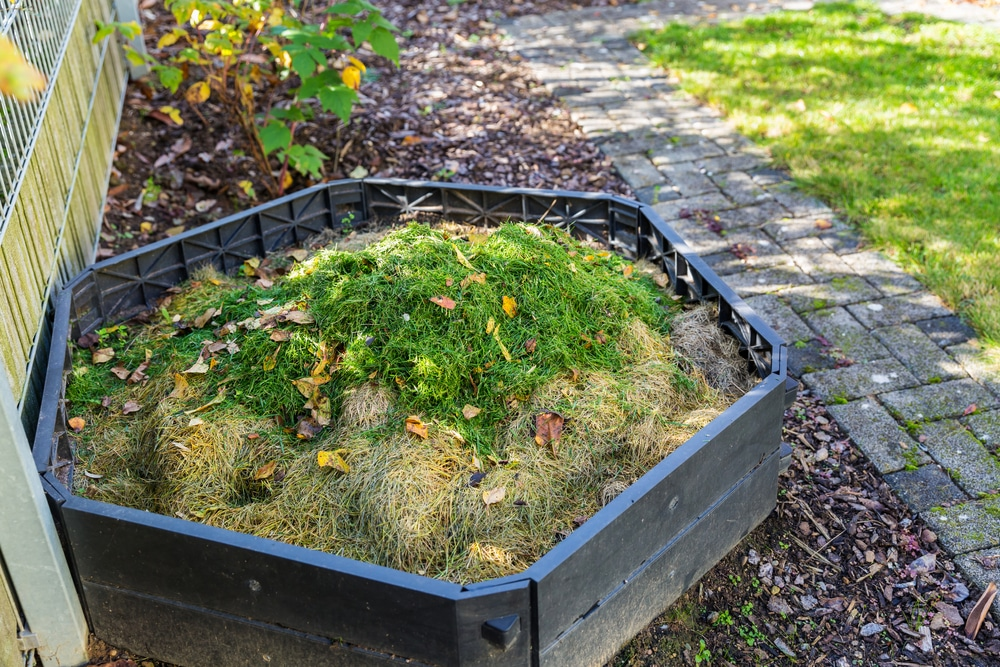 backyard compost for sustainable living